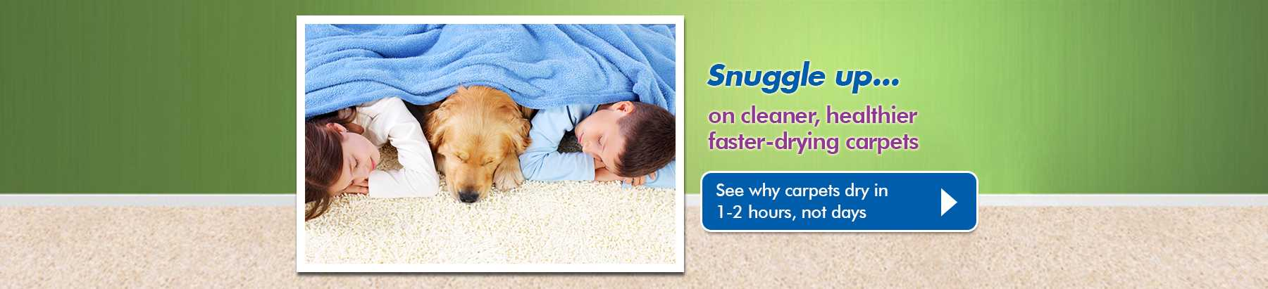Carpet upholstery cleaning sunshine coast and hinterland chem why chem dry carpet cleaning solutioingenieria Images