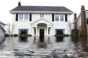 Hinterland water damage technicians are highly trained to fully restore damaged carpets, flooring and furniture - image